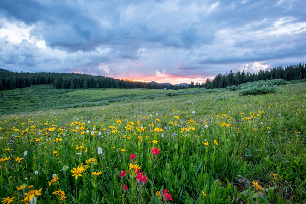 A pink sunset peeking through the clouds behind the mountains across a valley filled with colorful wildflowers.