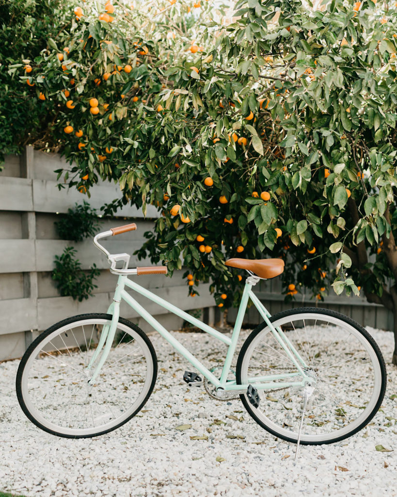 A teal bicycle parked on a gravel path in front of a fence with greenery hanging over it.