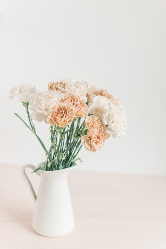 A white pitcher of rose and cream colored carnations to remind us that we can calm down and control our emotions.