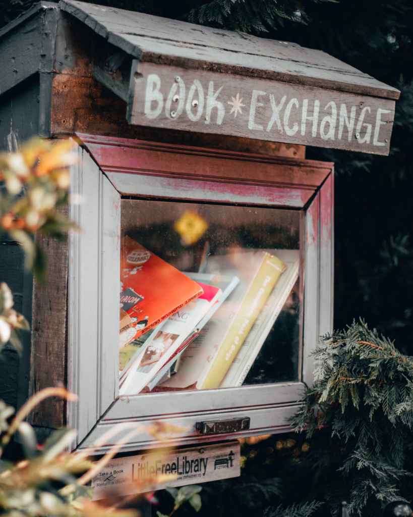 Picture of a book exchange mailbox stuffed with books.