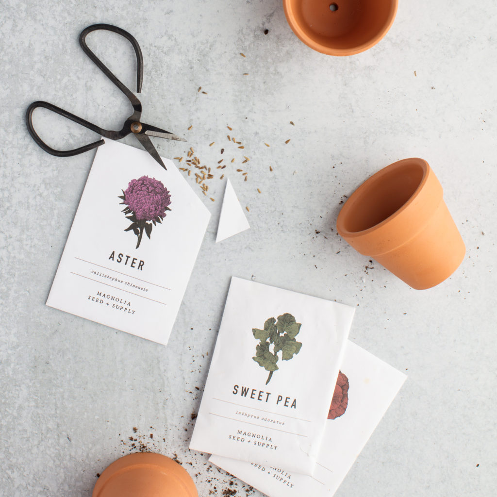 Scattered flower seeds, flower seed packets, and clay pots just like you would use to seed a garden.