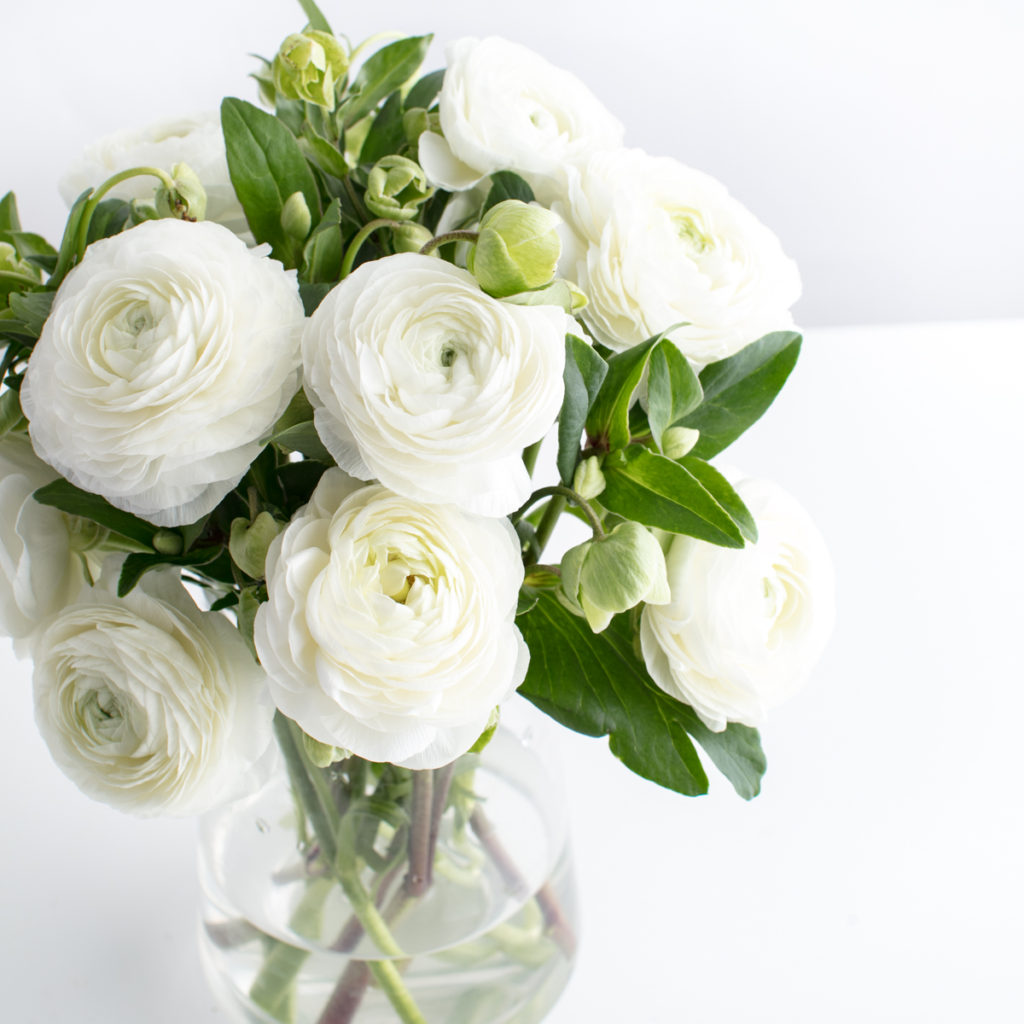 White flowers in a clear vase, reminding you that there is hope even as you learn how to deal with hurt feelings.