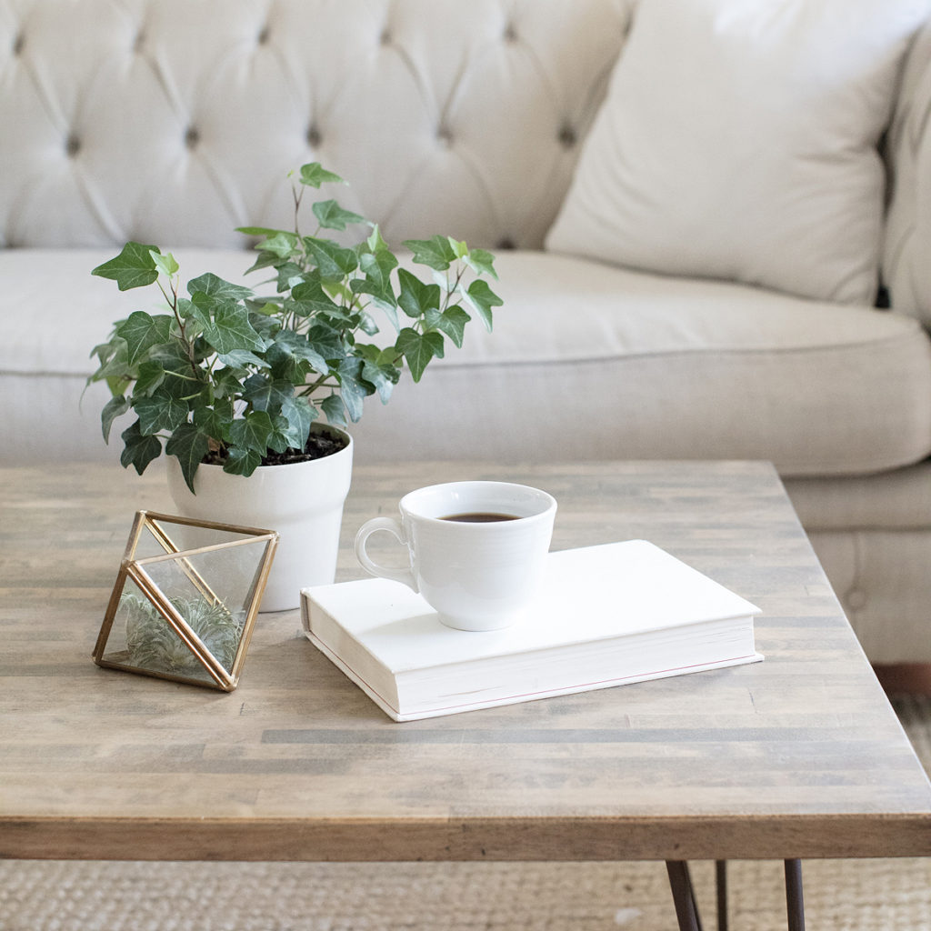 A green plant and a cup of coffee sitting on a coffee table inviting you to work through the feelings of hurt.