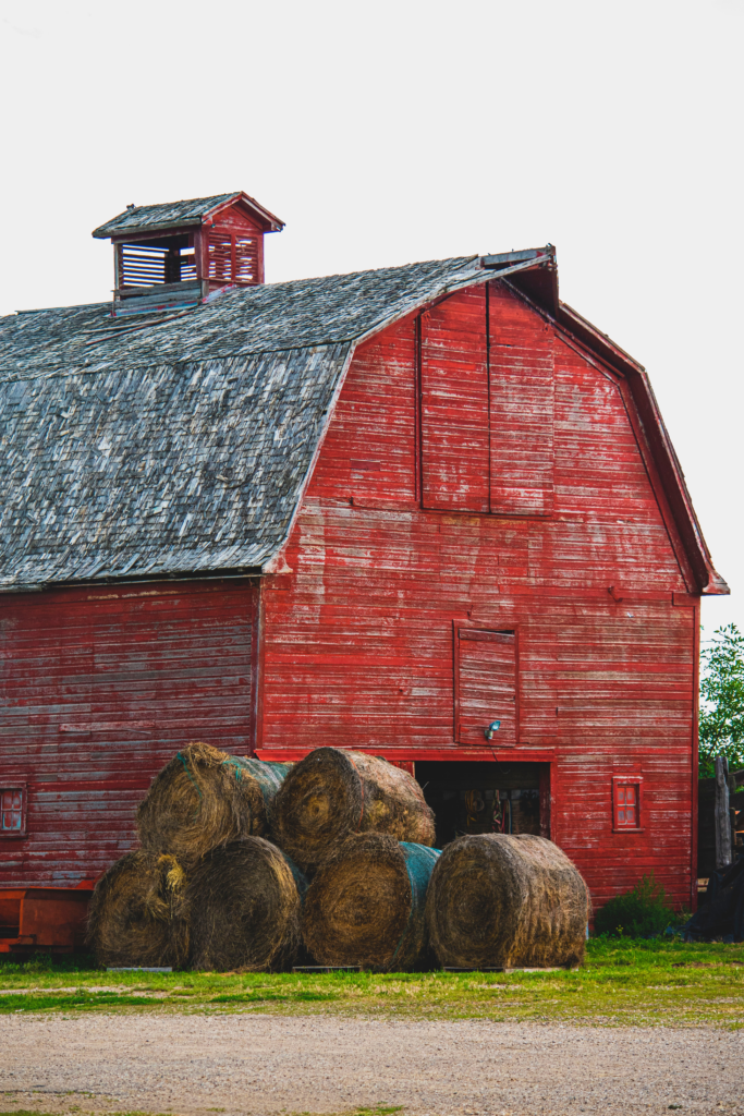 A big, red barn with round hay bales stacked outside reminding you of the backdrop for the story of Charlotte's Web.