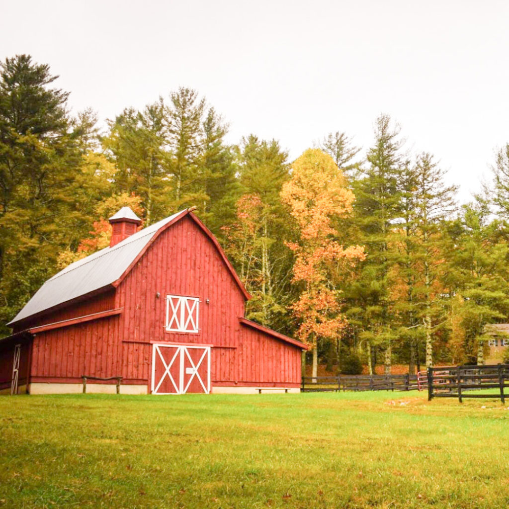 A red barn, standing tall amidst the autumn leaves.