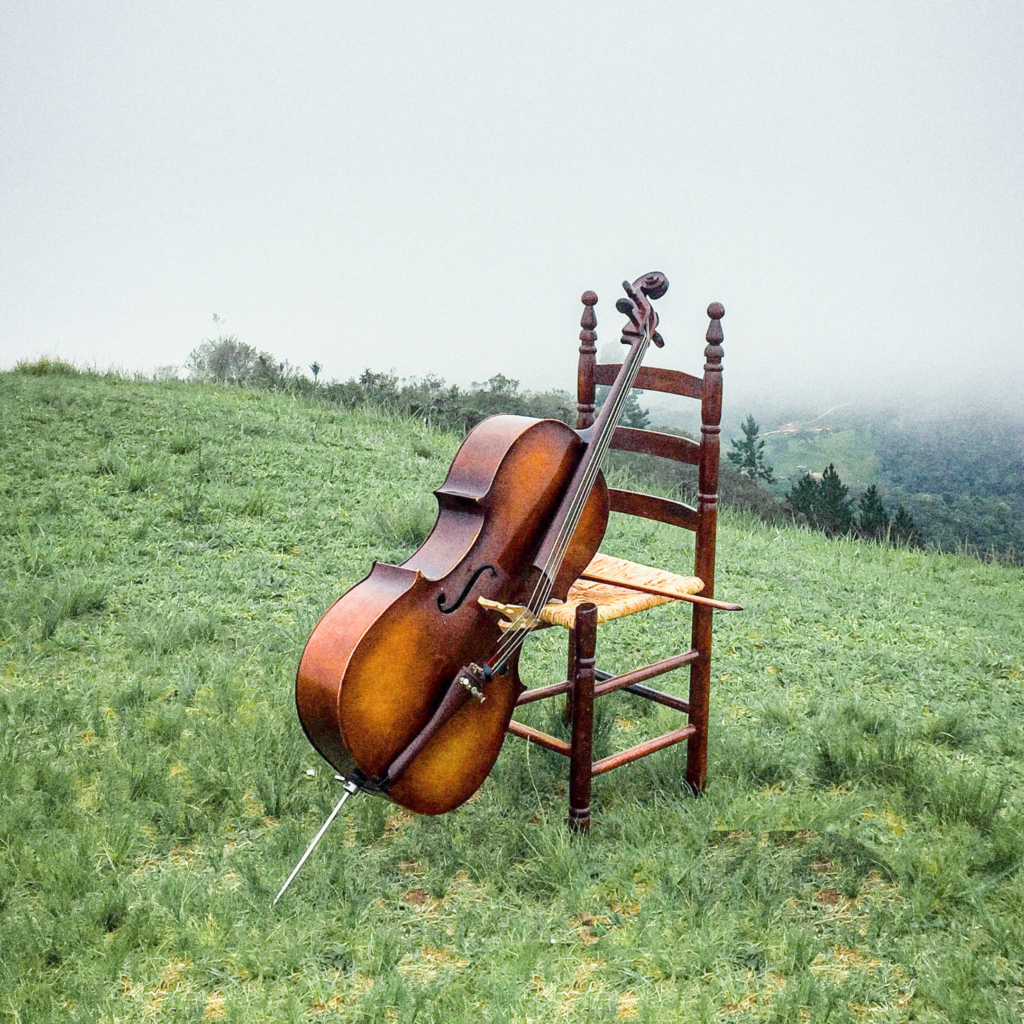 A polished cello leaning against a wicker chair in a green field.