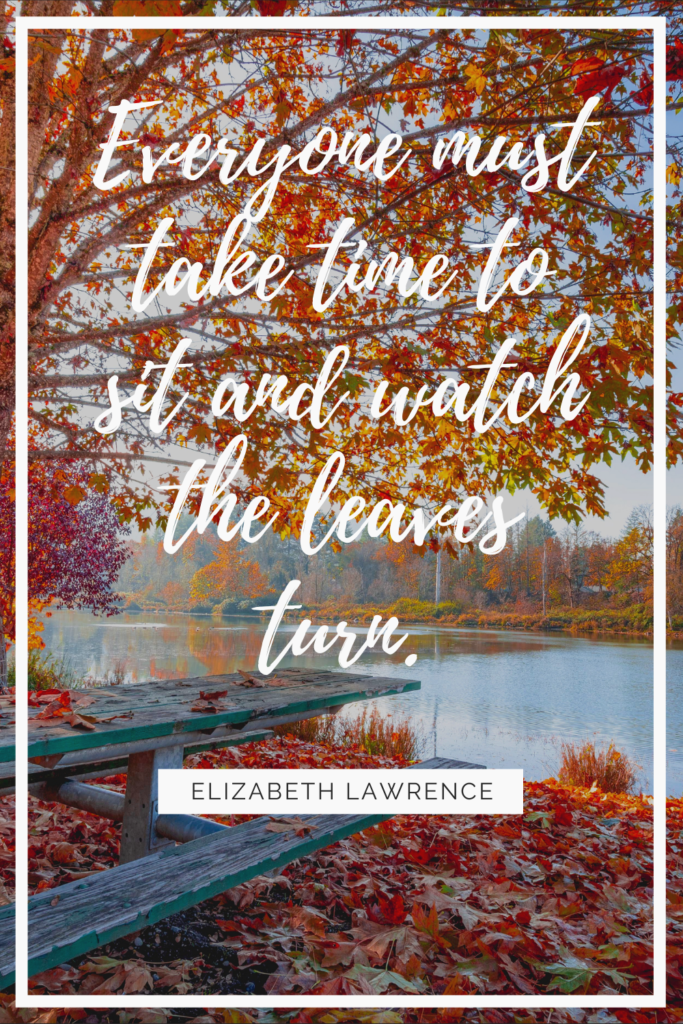 Autumn is a time of crispness, of changing leaves and hot apple cider, of long walks in the crisp air and reading good books curled up by the fire.  But sometimes it's hard to put that feeling into words.  Click the link to find 30 inspiring quotes all about the fall season to help you relish the crisp air and enjoy the season to its fullest.
