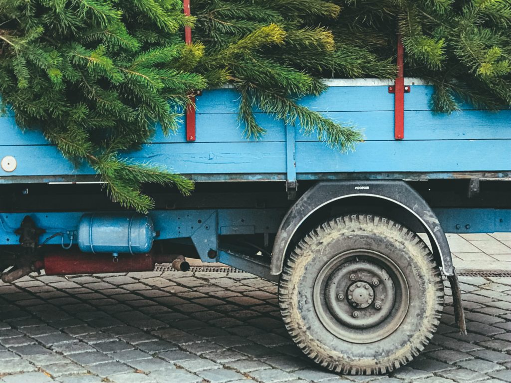 A blue truck loaded up with Christmas trees ready to deliver.