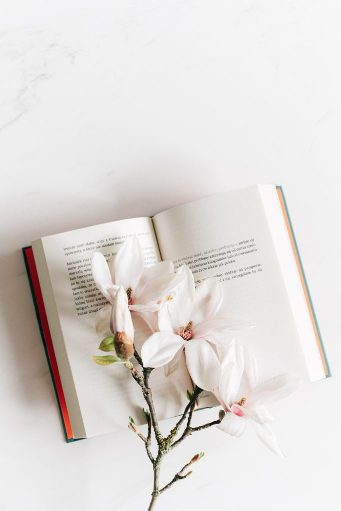 A storybook open with a white flower sitting gently on the pages of the book.