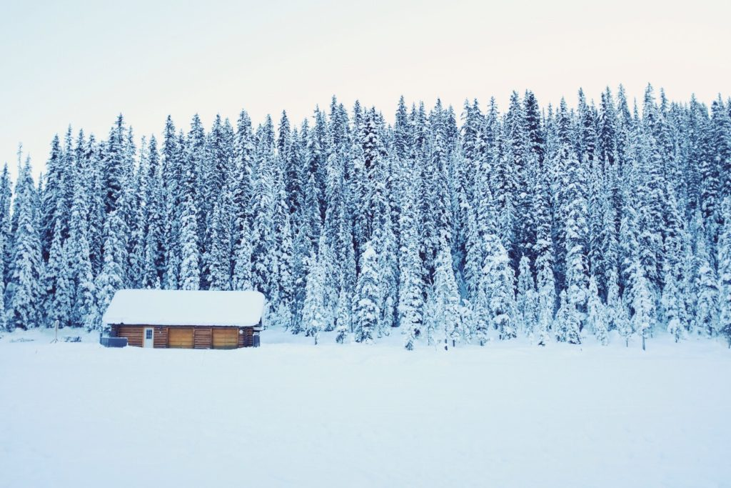 A log cabin nestled into the snow just on the near side of the woods covered in snow.