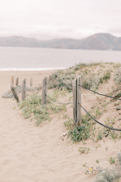 A path leading to the beach lined by sea grasses and distressed wooden poles.
