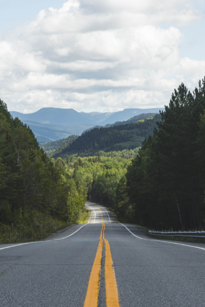 A paved road stretching out before you in between the pine trees and the mountains.
